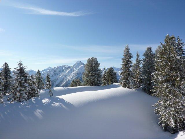 Nassereith-Tirol-Natuur