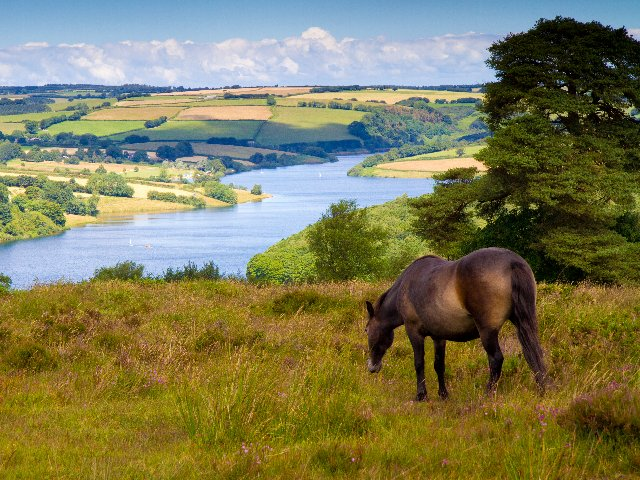 Groot Brittannië - Exmoor NP
