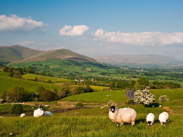 Groot-Brittannië - North York Moors NP