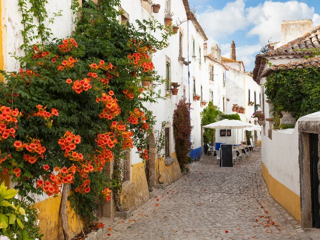 Portugal - Óbidos  - Straatbeeld