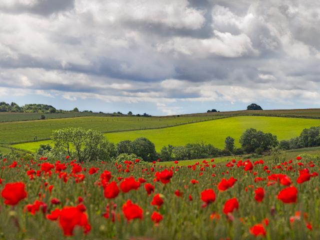 Engeland - Cotswolds