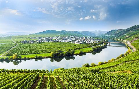 Duitsland, Wijncruise over de Rijn & Moezel - Oad busreizen