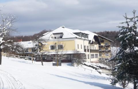 Hotel Wienerwaldhof ***+