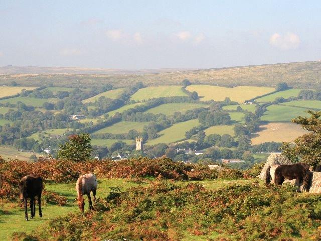 Engeland  - Dartmoor National Park