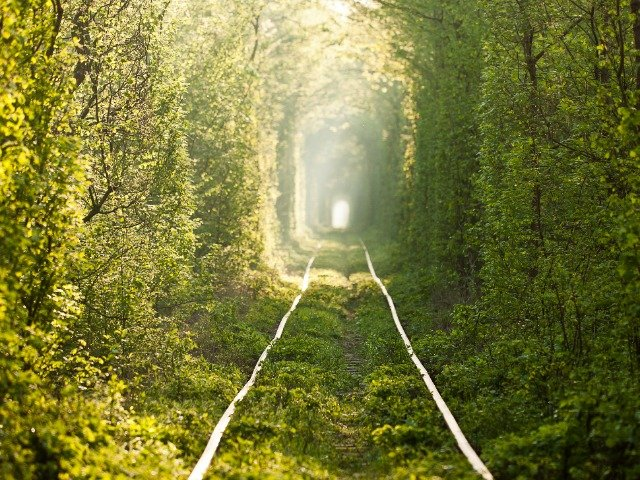 Rivne - Tunnel of Love