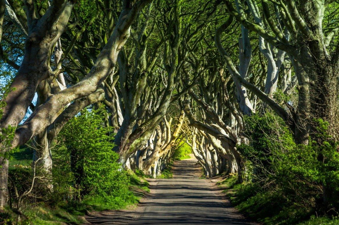 Busreis Ontdek ruig Noord Ierland