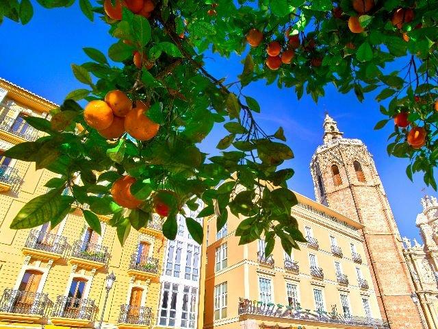 Valencia plein