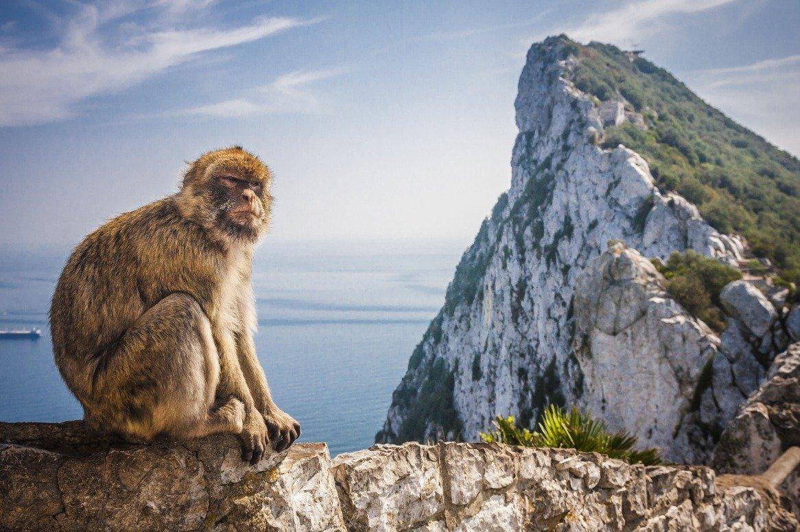 Spanje - Gibraltar