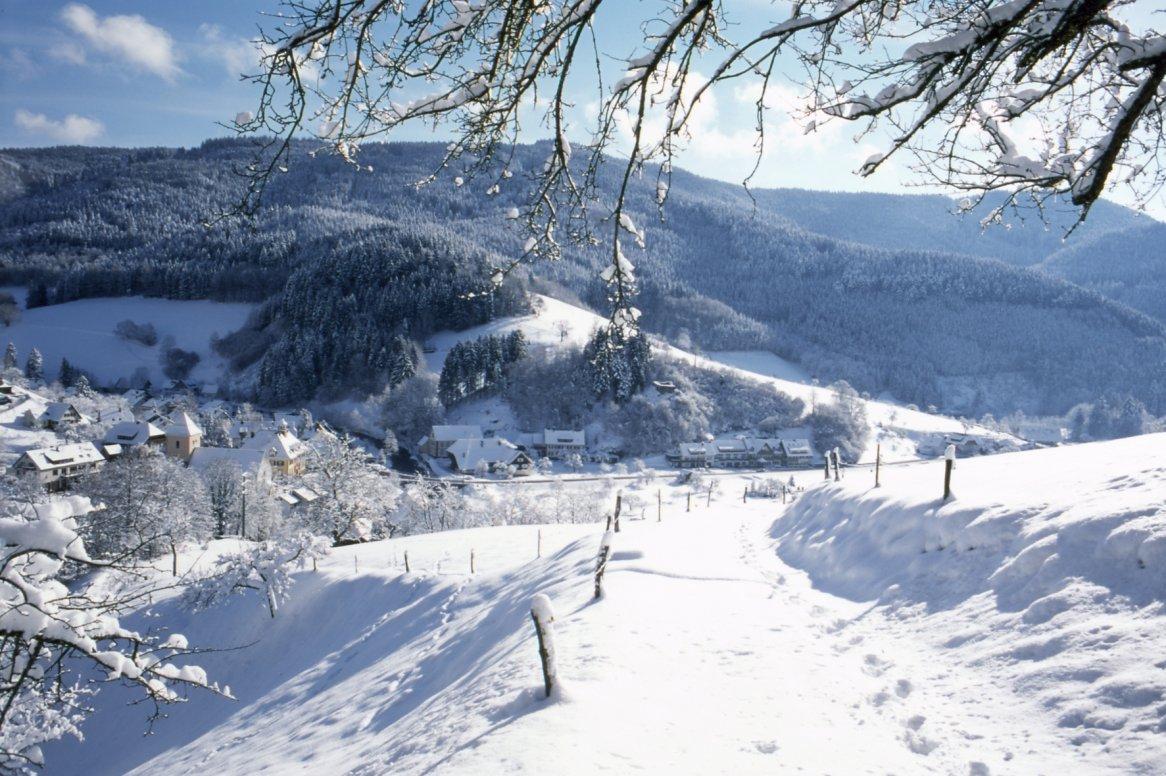 Zwarte Woud wintersfeer