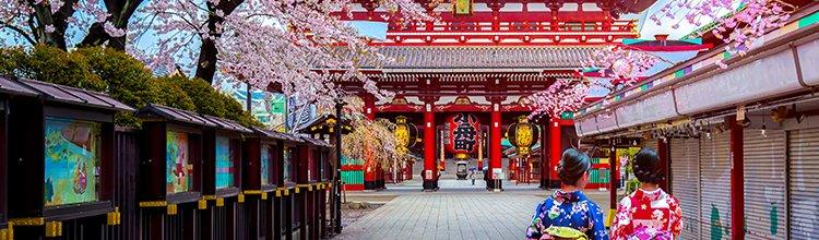 041-06 walkchallenge japan - 750x220_6.jpg