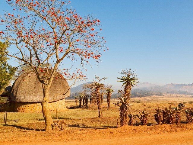 Zuid-Afrika - Swaziland