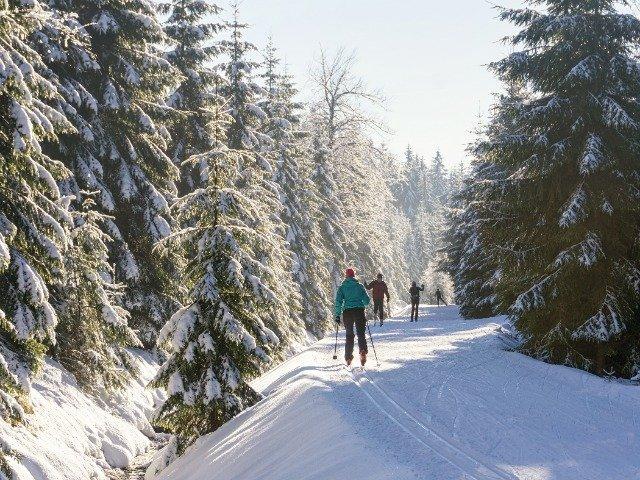 Tsjechië - Langlaufen bij Jizera