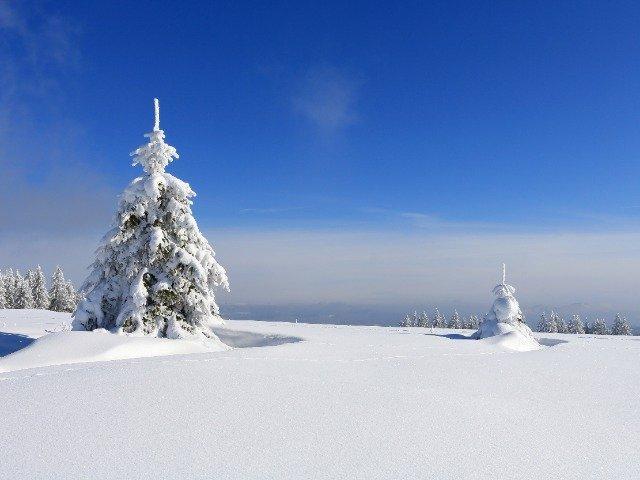 Tsjechië - Uitzicht vanaf een loipe
