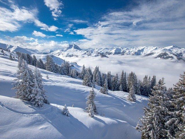 Oostenrijk - Kitzbüheler Alpen