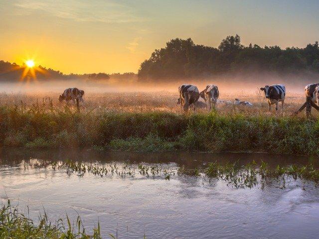 Nederland - De Dinkel door Twente