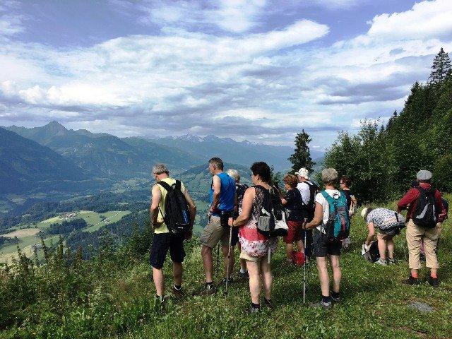 Wandelaars in de Groene Almen