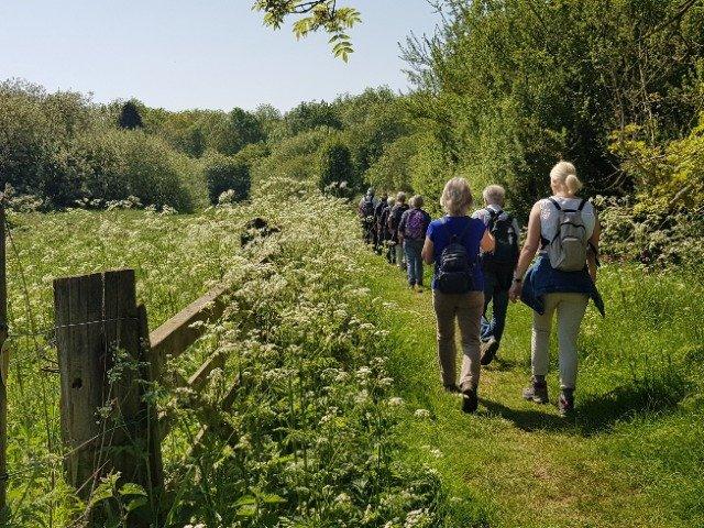 Engeland - Wandeling Cotswolds