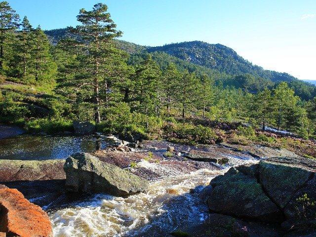 Noorwegen - Eikerapen