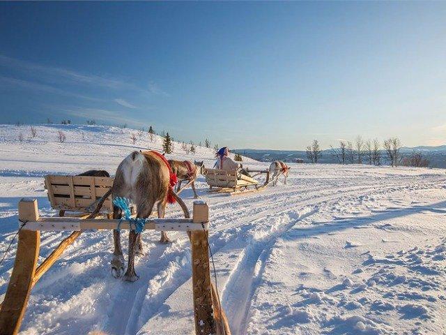 Winterexperience Beitostølen - rendiersleeën