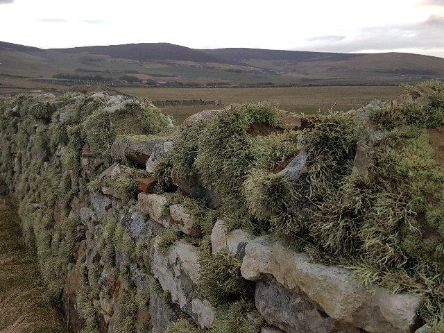 Schotland - Orkney - Orphir Bay