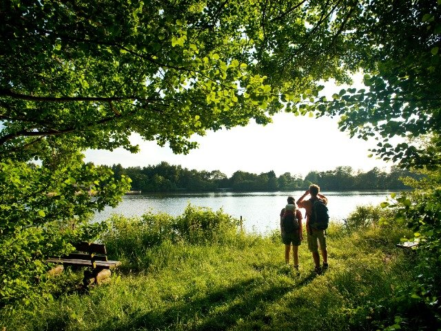 Duitsland - Westerwald - meer