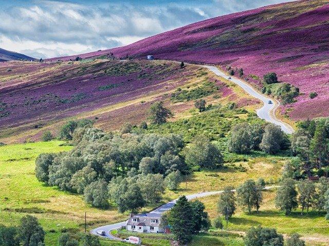 Schotland - Cairngorms