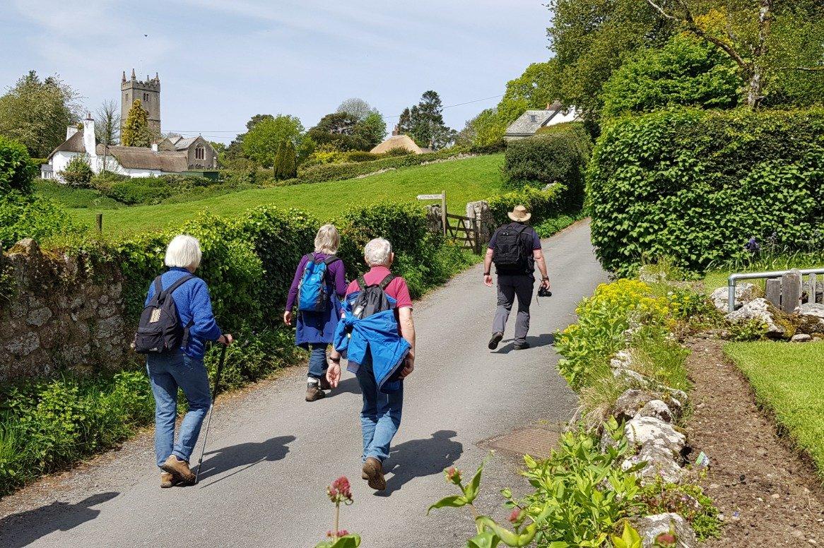 Zuid-Engeland - Dartmoor