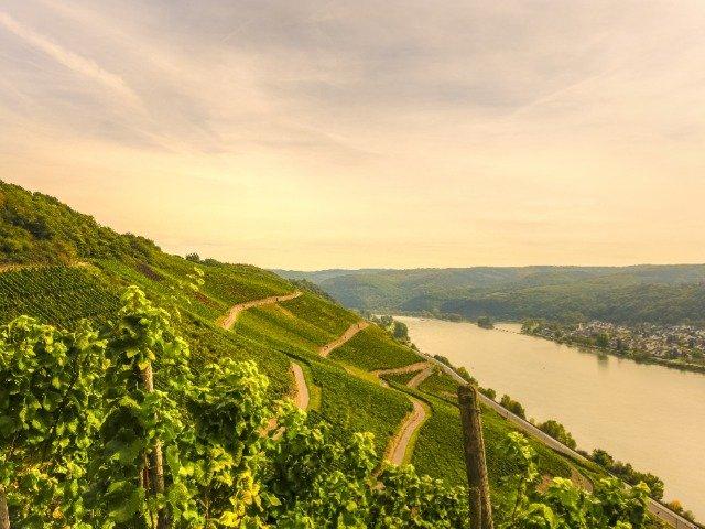 Duitsland - Rijn