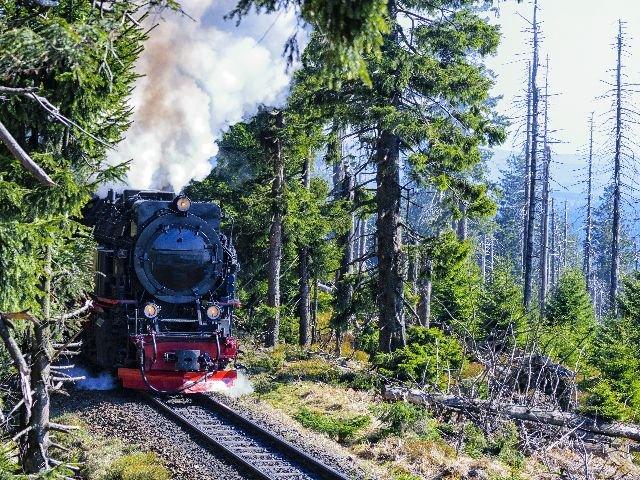 Duitsland - De Harz - Stoomtrein