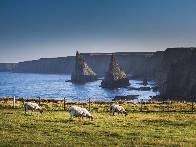 Schotland - John O'Groats - Duncansby Head