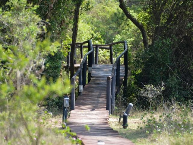 gooderson bushlands game lodge - omgeving
