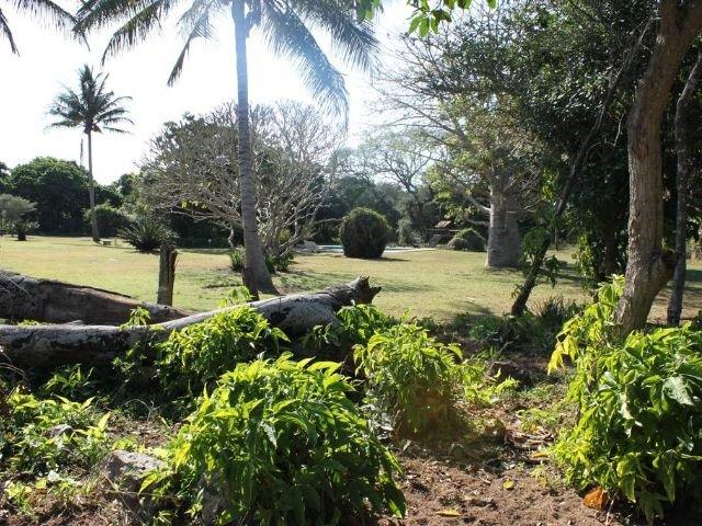 gooderson bushlands game lodge - tuin