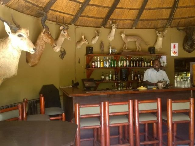 gooderson bushlands game lodge - bar
