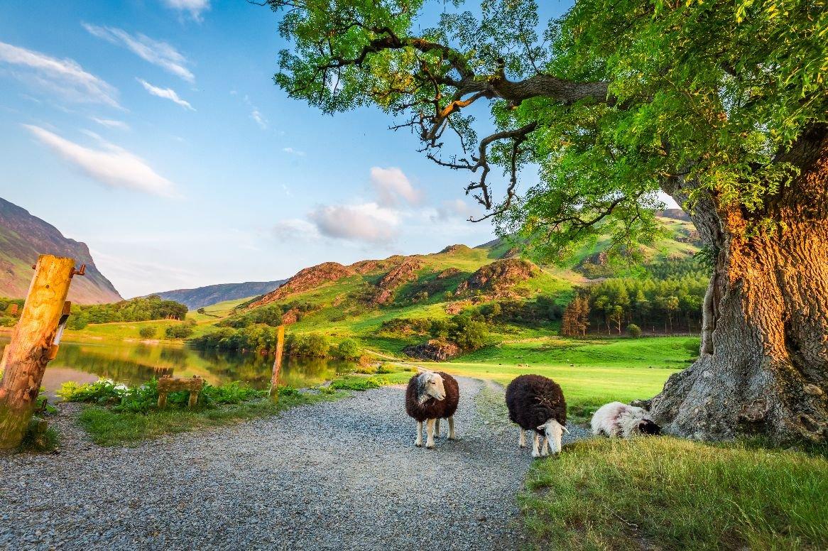 Rondreis Engeland, Wales Schotland