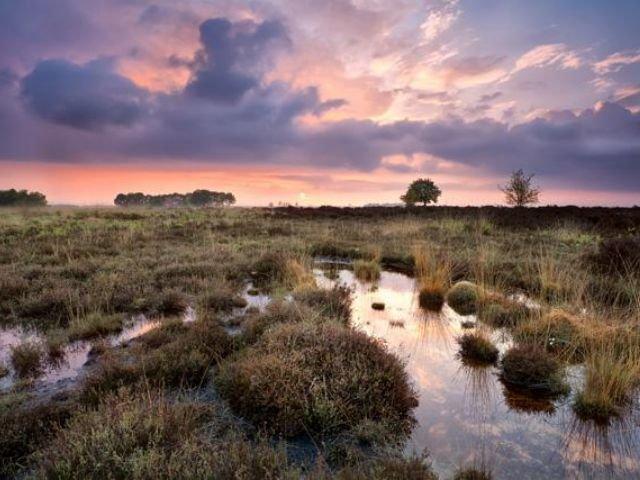 Nederland - Er gaat niets boven Groningen - Omgeving Assen