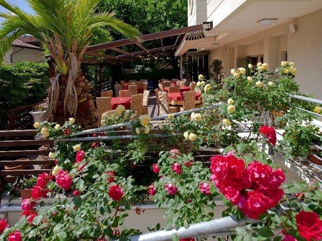 Rimini - Hotel Rondinella e Viola *** - terras
