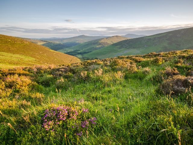 Ierland - Wicklow Mountains