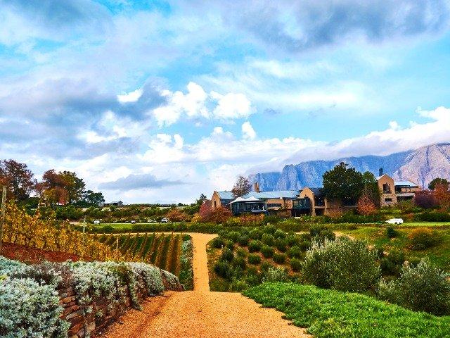 Zuid-Afrika - Stellenbosch