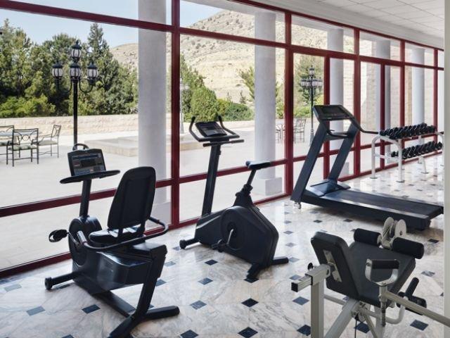 Movenpick Nabatean Castle Hotel - fitnessruimte