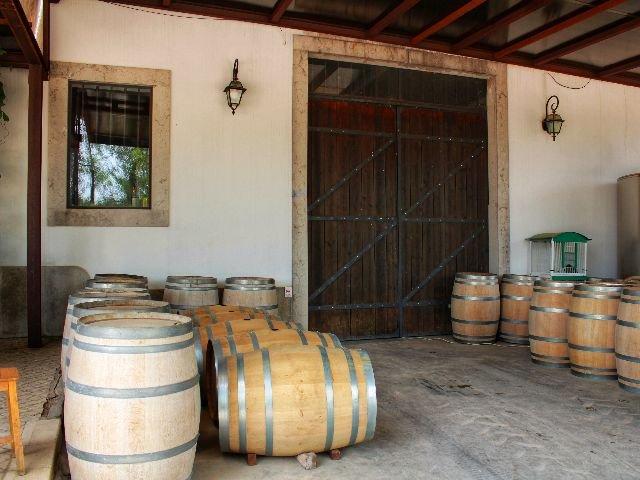 Portugal - Azeitao - wijnkelder