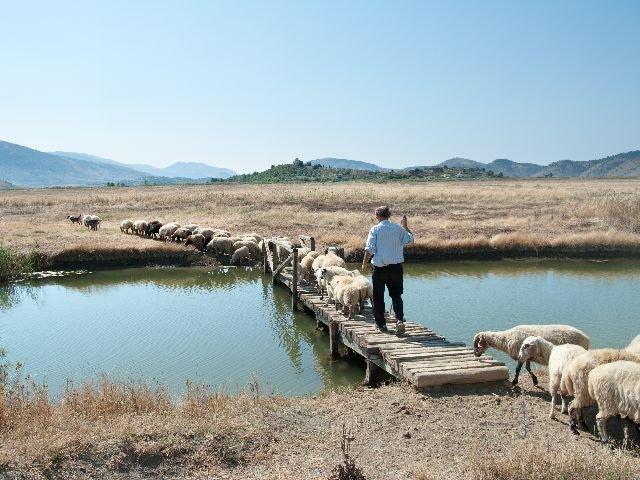 Albanië - omgeving