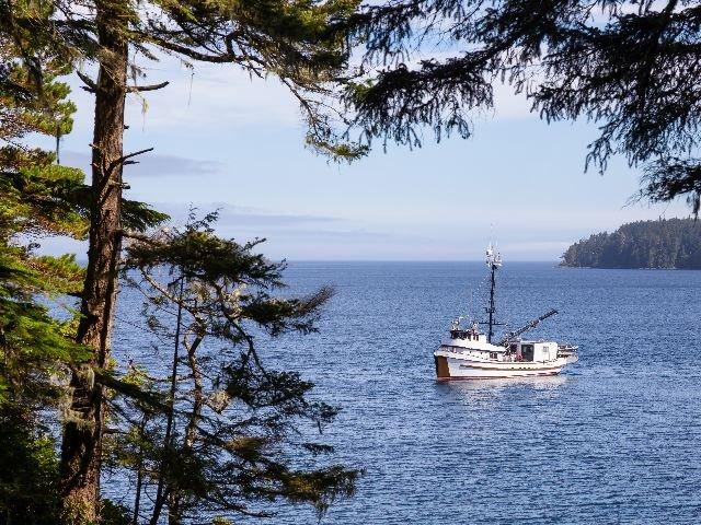 Canada - Port Hardy - vissersboot