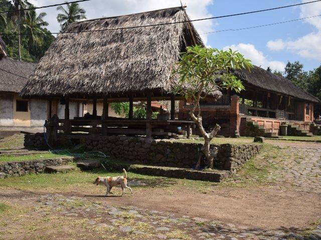 Bali - Tenganan - huis
