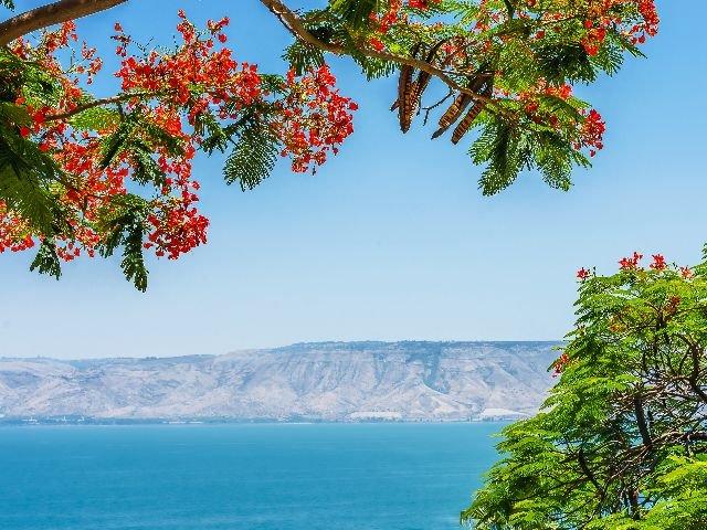 Israël - meer van Tiberias - uitzicht