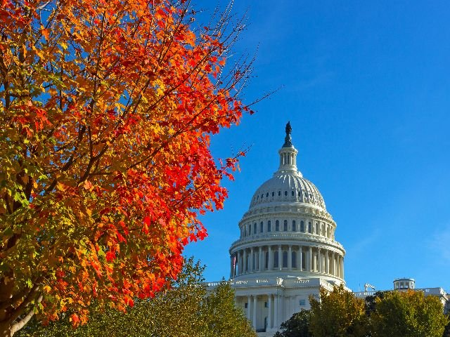 USA - Washington D.C. - witte huis