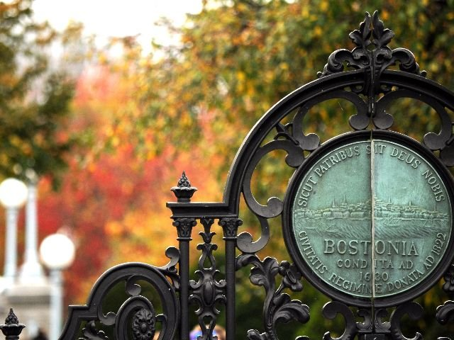 USA - Boston - Public Garden