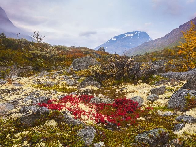 Noorwegen - Jotunheimen - omgeving Fagernes