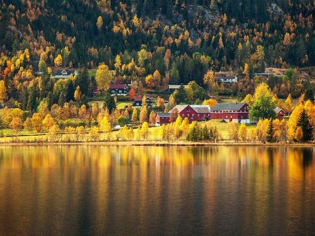 Noorwegen - Hardangerjord in de herfst