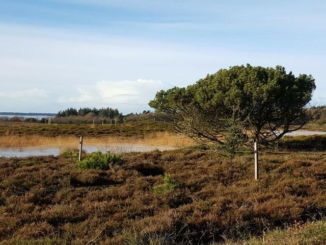 Denemarken - Fietsen op het Deense eiland Funen