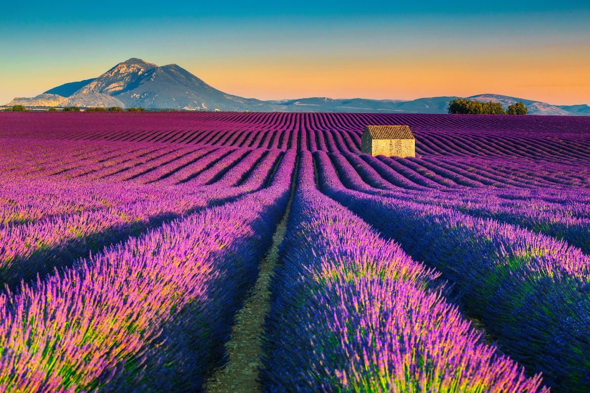 Frankrijk_Provence_landschap